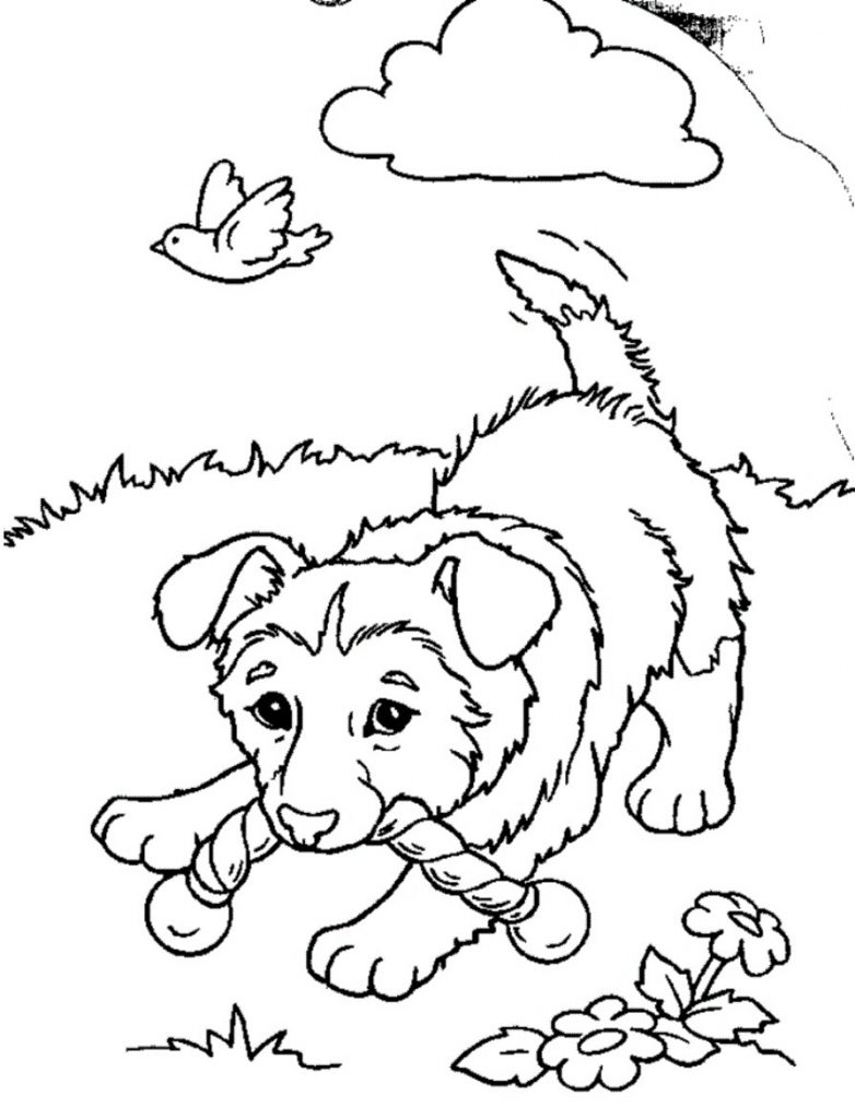 printable cute puppy coloring pages adorable puppy coloring pages at getcoloringscom free cute printable puppy pages coloring