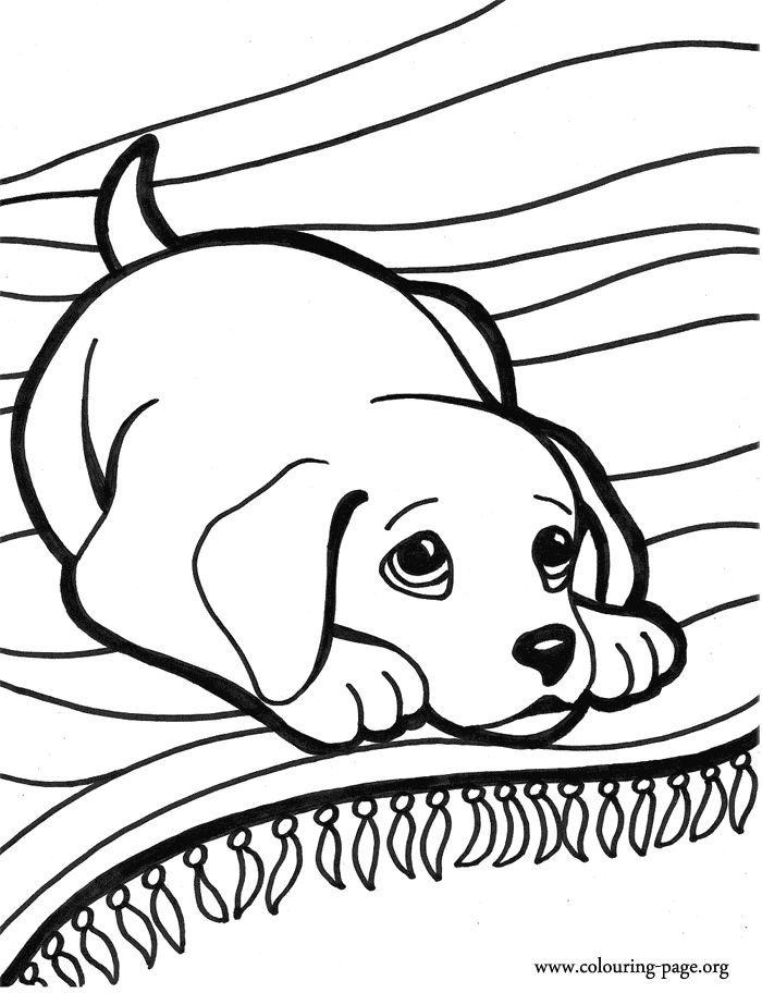 printable cute puppy coloring pages cute dog coloring pages to download and print for free pages cute printable coloring puppy
