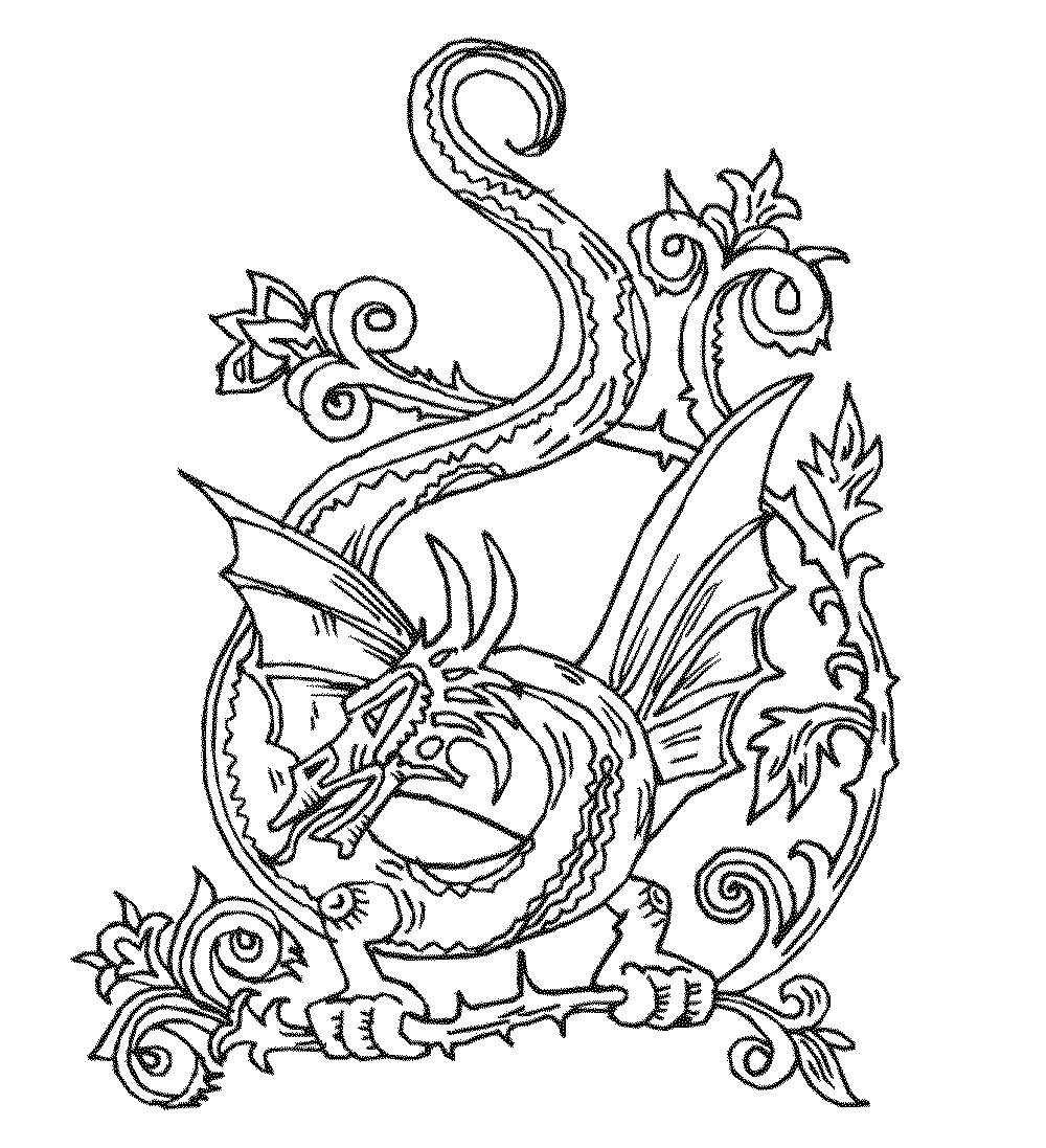 printable dragon pictures dragon coloring pages to download and print for free dragon pictures printable