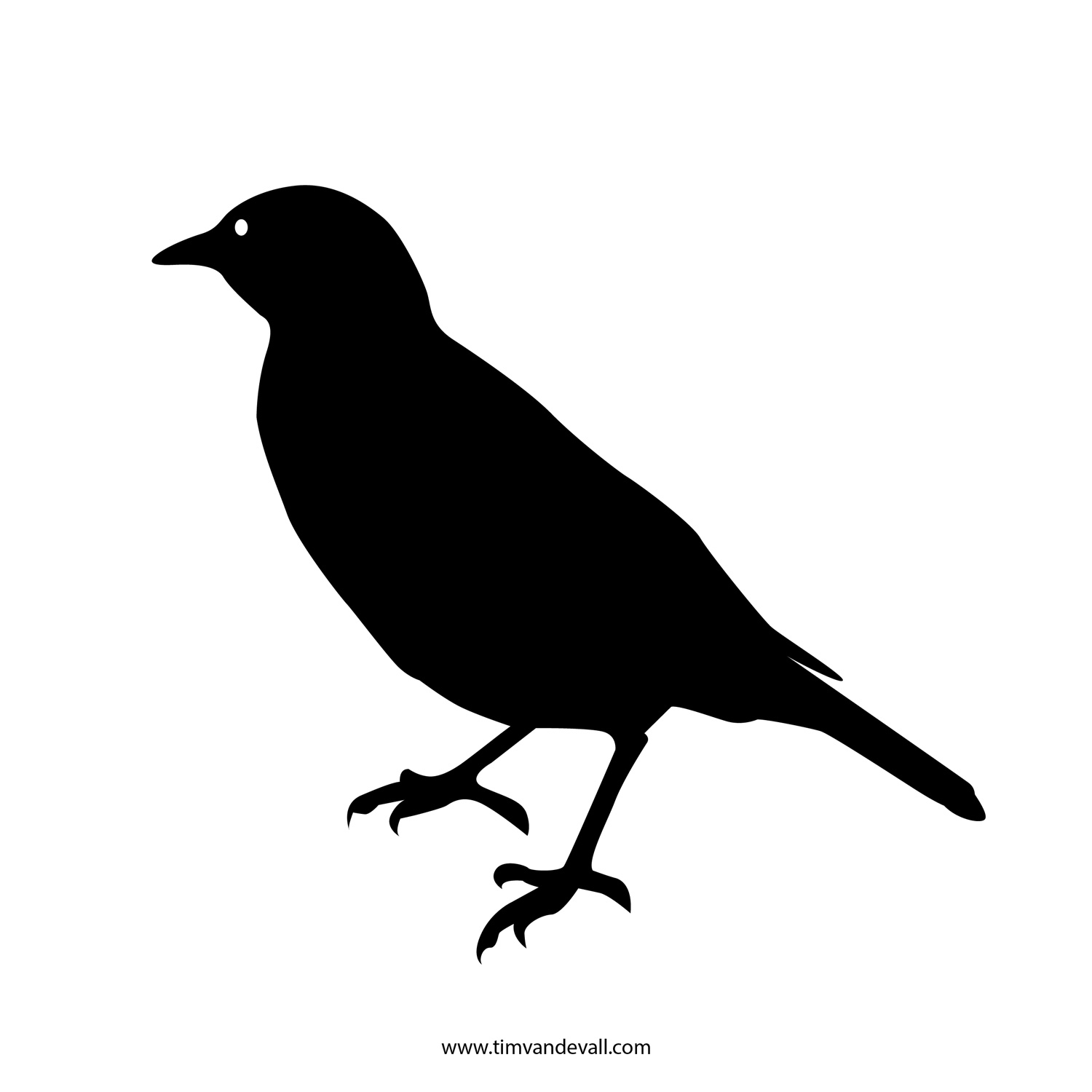 printable pictures of birds 9 printable bird templates free sample example format birds pictures printable of