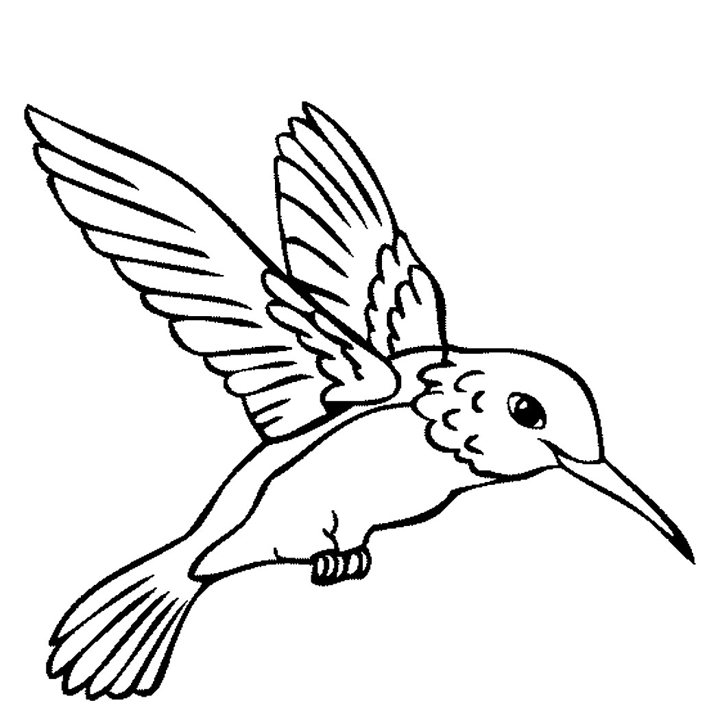 printable pictures of birds cute bird coloring page for kids tsgoscom birds pictures of printable