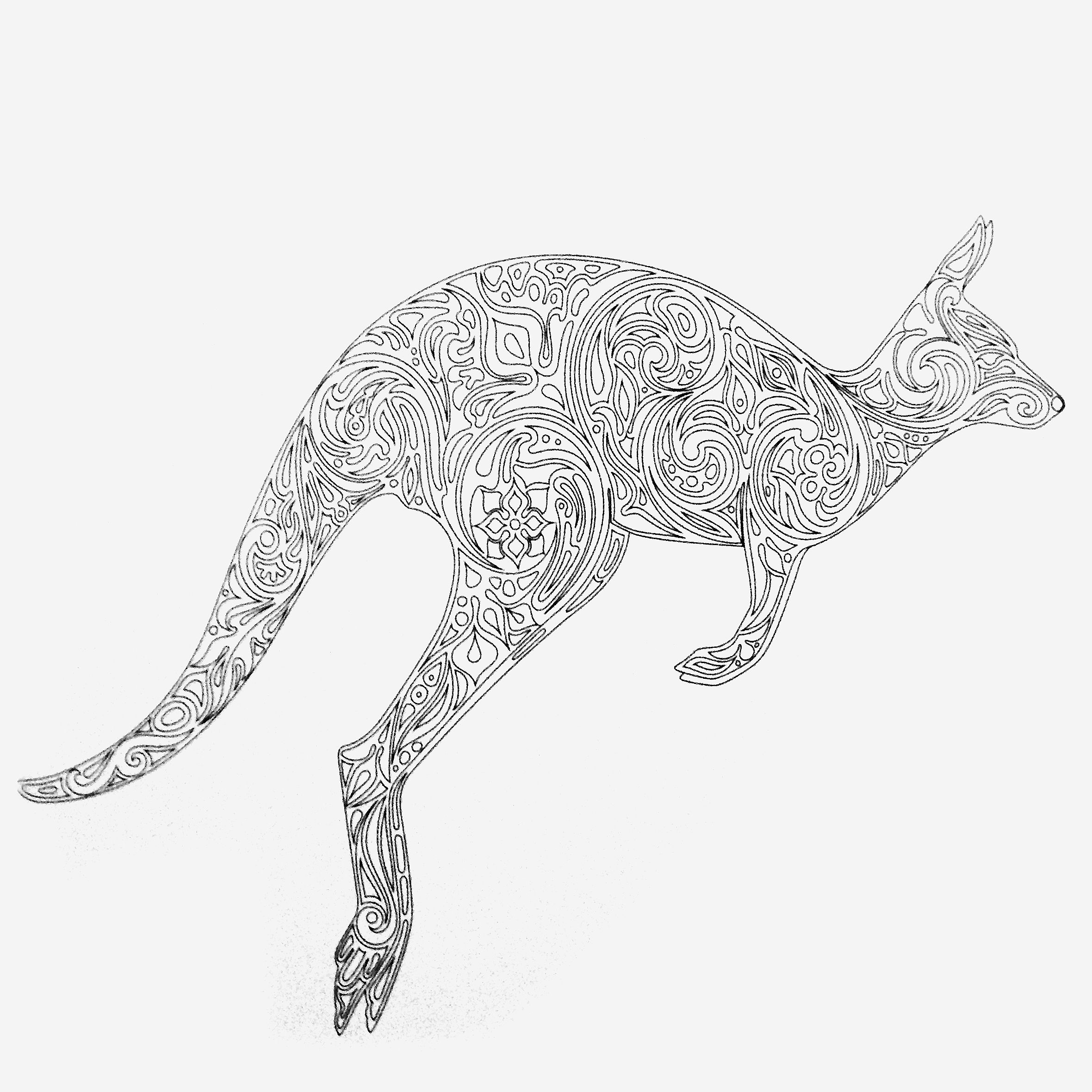 printable pictures of kangaroos colors of nature adult colouring book kangaroo cool pictures of kangaroos printable