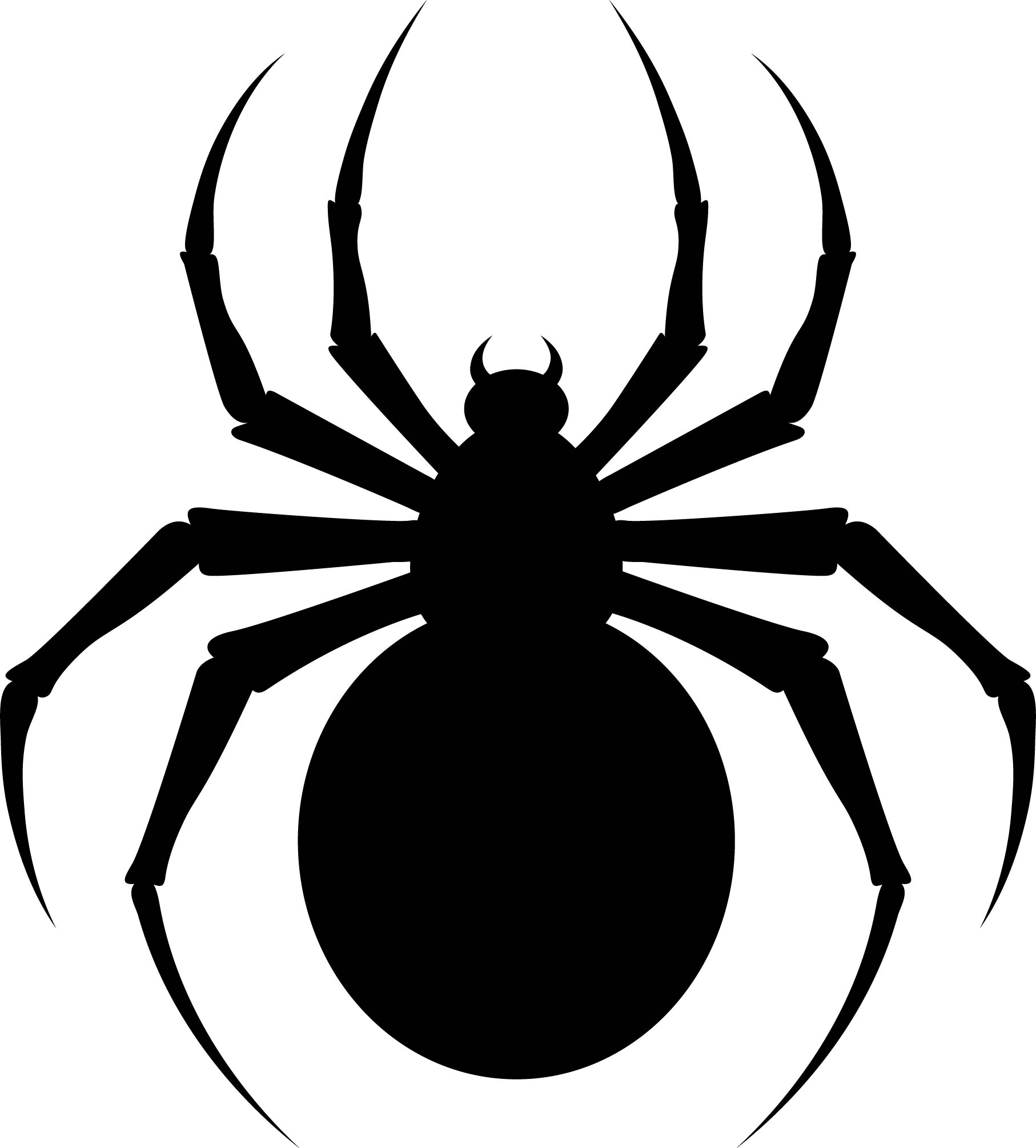 printable spiders download this spider stencil and other free printables spiders printable