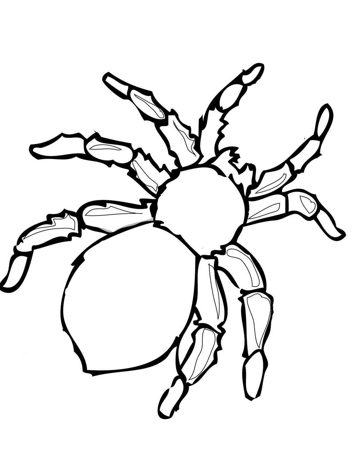 printable spiders free printable spider coloring pages for kids spiders printable