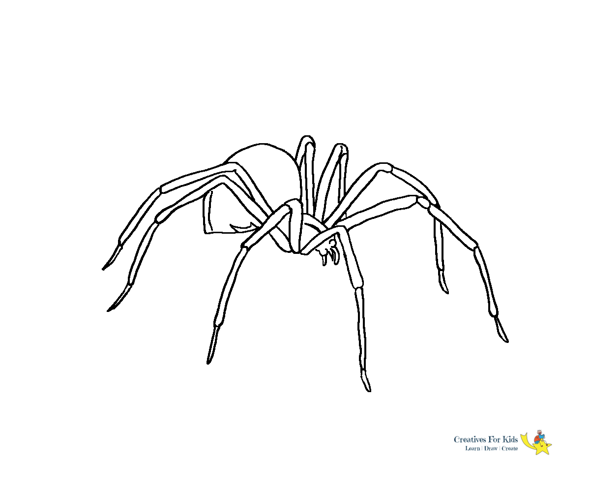 printable spiders spider coloring pages free printable resume format printable spiders