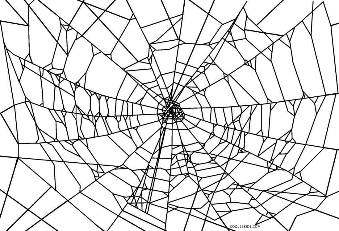 printable spiders spider coloring pages kiddo printable spiders