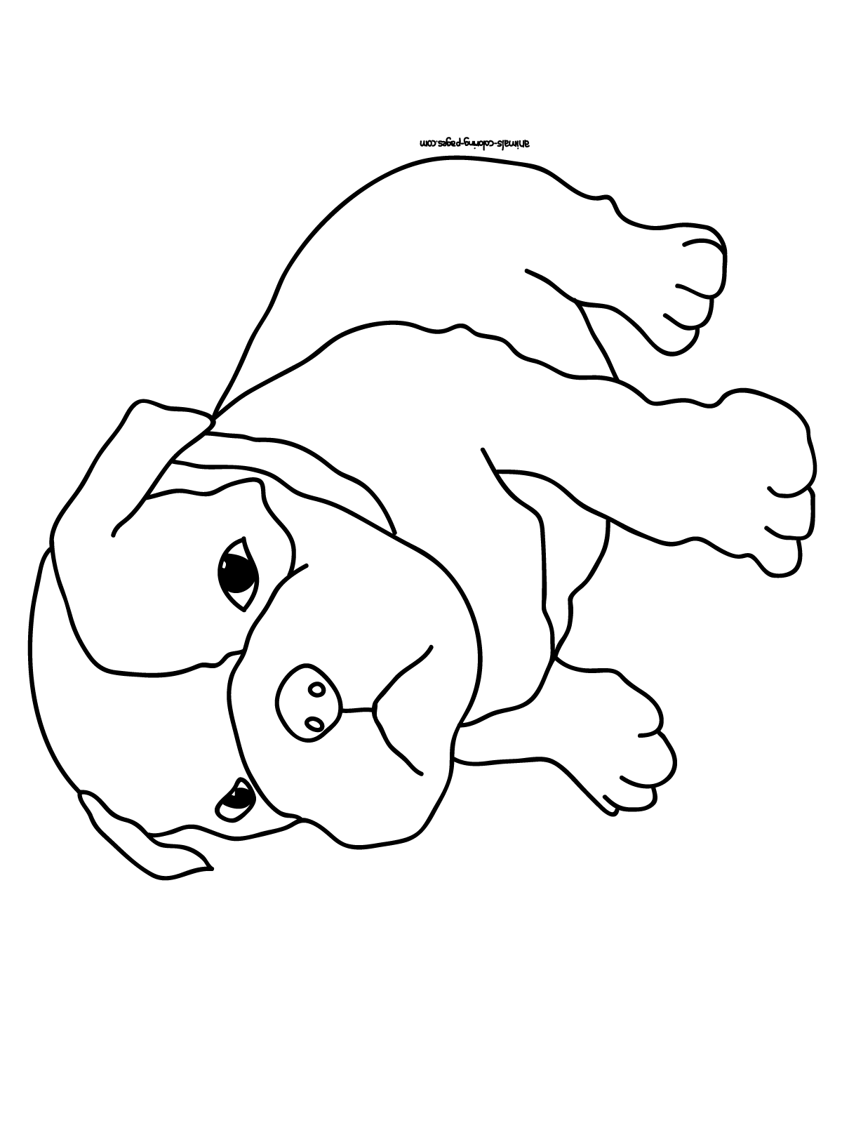 puppy pictures for coloring realistic puppy coloring pages download and print for free coloring pictures puppy for