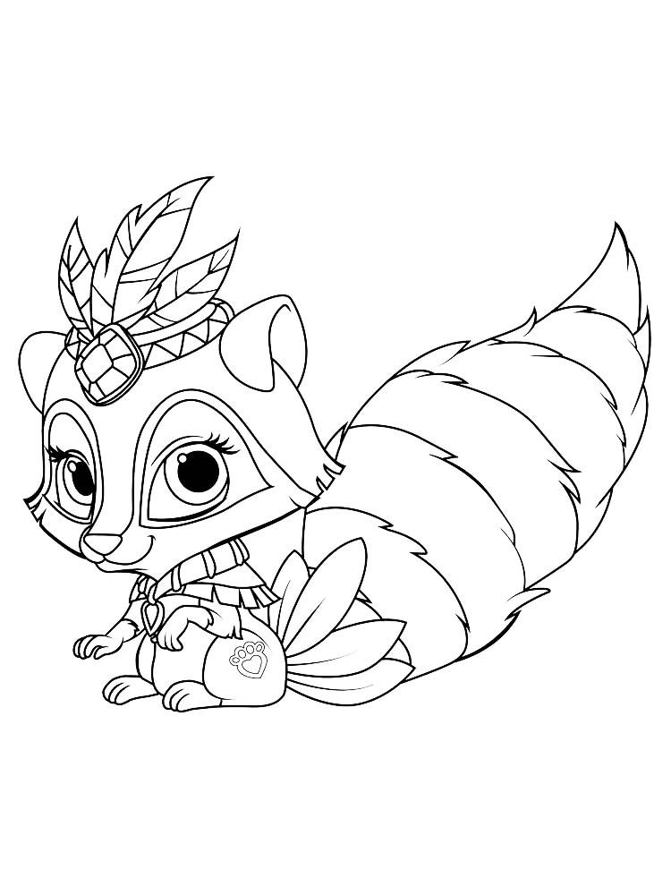 raccoon coloring raccoon smiling coloring page free printable coloring coloring raccoon