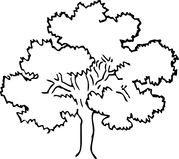 rainforest tree coloring page download online coloring pages for free part 57 rainforest page coloring tree