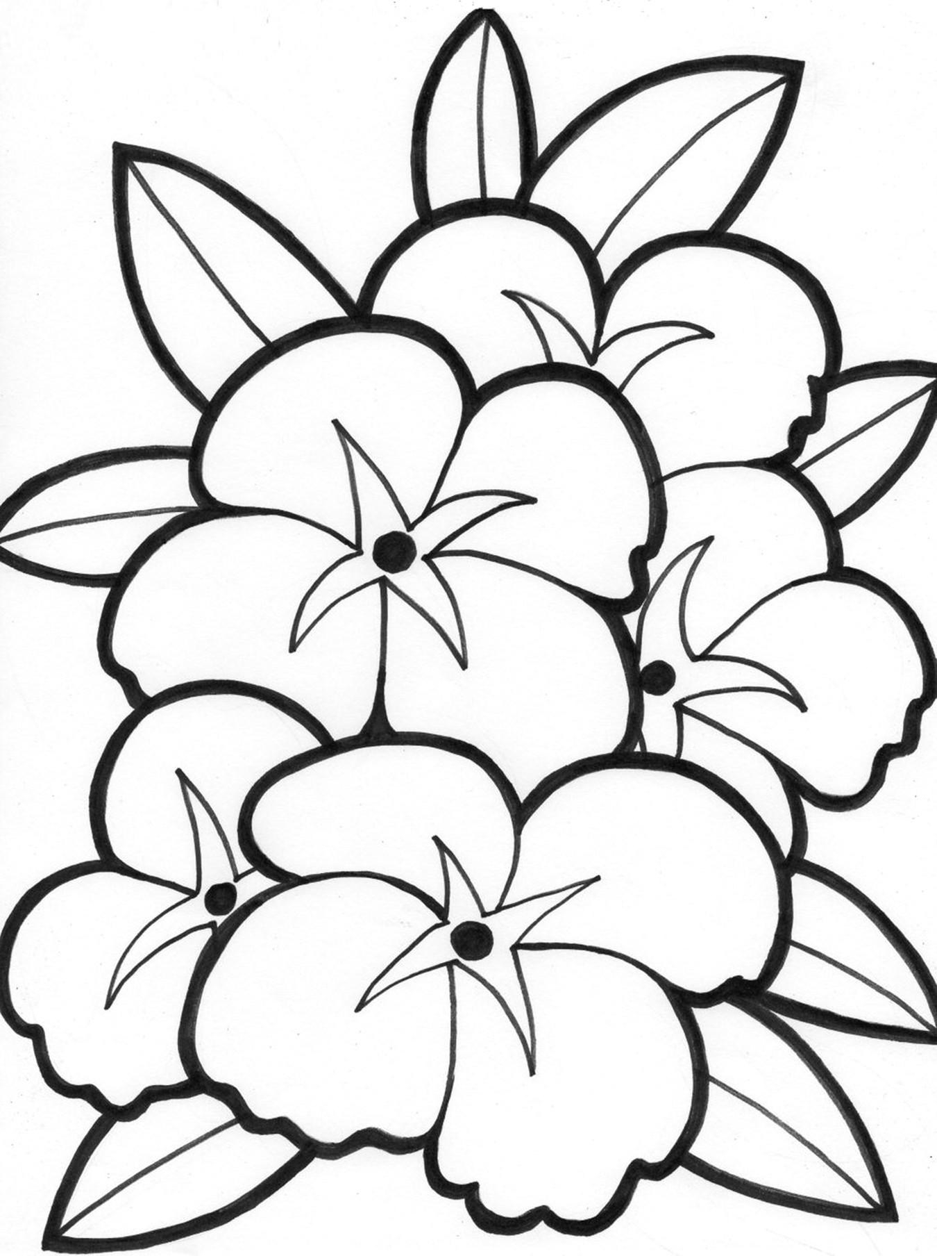 rainforest tree coloring page rainforest tree coloring page page coloring rainforest tree