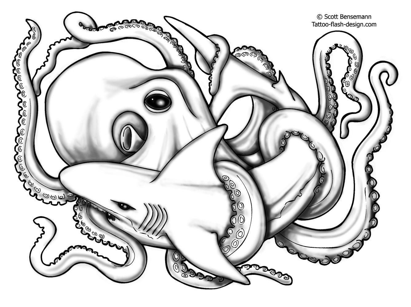 realistic octopus drawing image result for realistic octopus drawing octopus realistic drawing octopus
