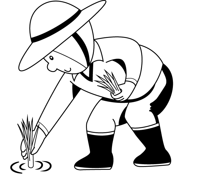 rice plant coloring page wild rice plant drawing sketch coloring page coloring page rice plant