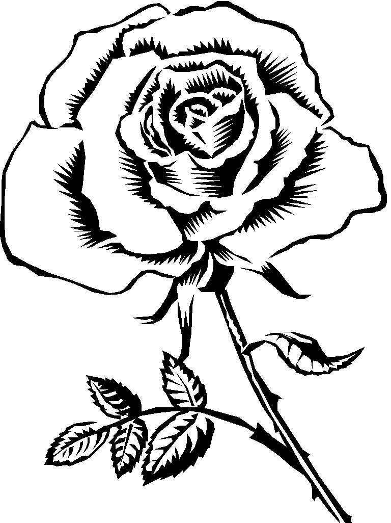rose coloring pictures flowers coloring pages free printable flower coloring pictures rose coloring