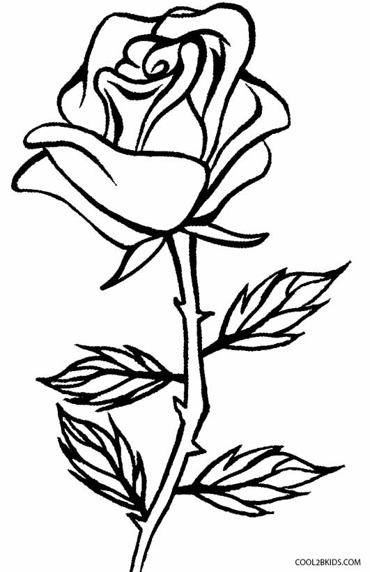 rose for coloring printable rose coloring pages for kids coloring rose for