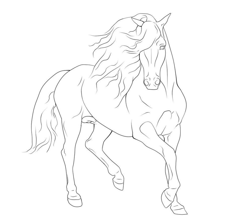 running horse coloring pages gaited horse lineart google search malvorlagen pferde running pages horse coloring