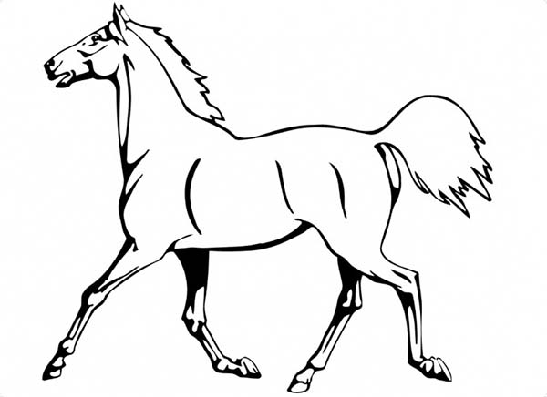 running horse coloring pages horse is running in horses coloring page download coloring running horse pages