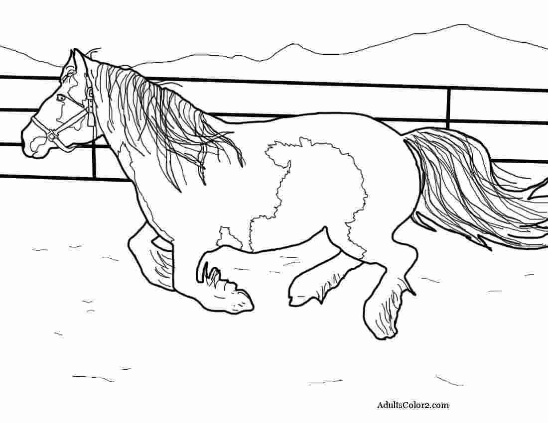 running horse coloring pages horse running coloring pages coloring home horse coloring pages running
