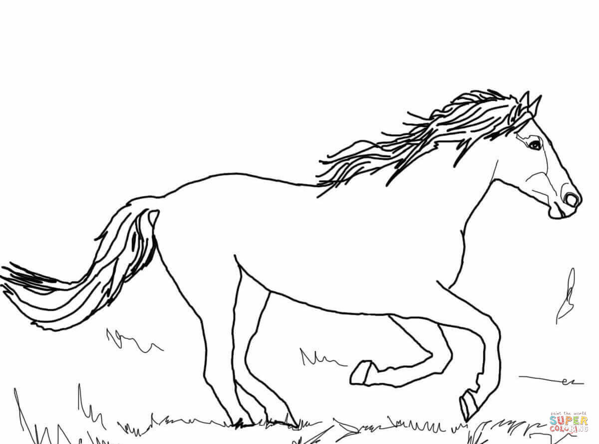 running horse coloring pages horse running drawing at getdrawings free download pages coloring running horse