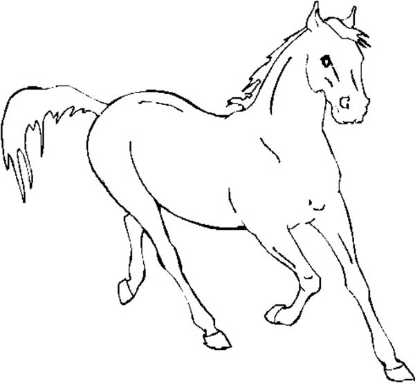 running horse coloring pages horse running fast in horses coloring page download horse running pages coloring