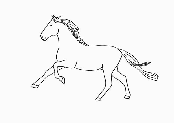 running horse coloring pages horse running outline in horses coloring page netart running pages horse coloring