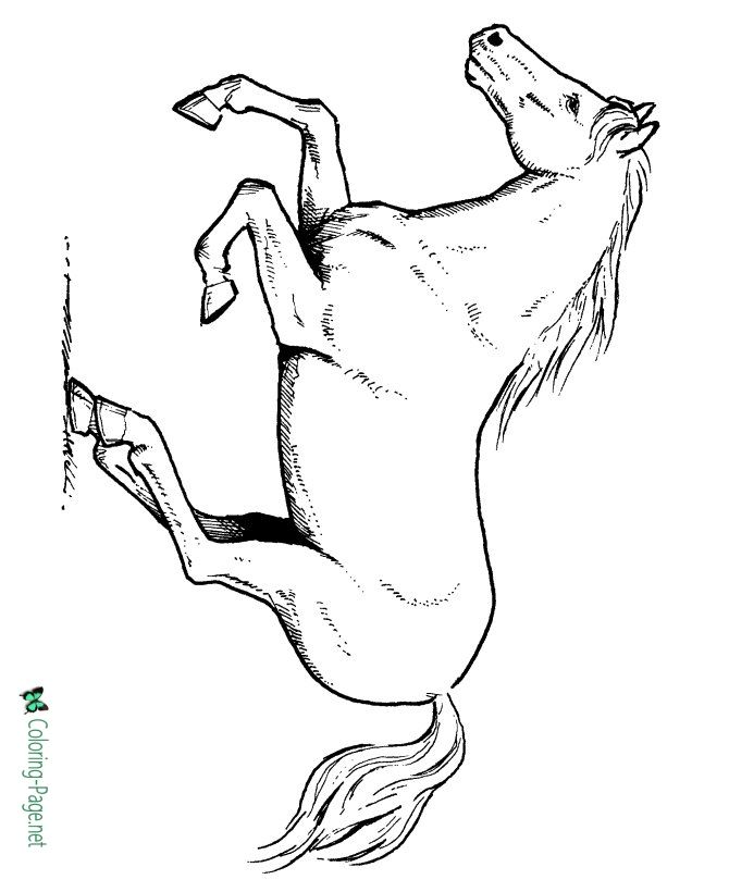 running horse coloring pages running coloring pages getcoloringpagescom running coloring pages horse