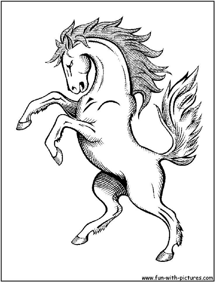 running horse coloring pages running horse coloring book pictures wowcom image pages running coloring horse