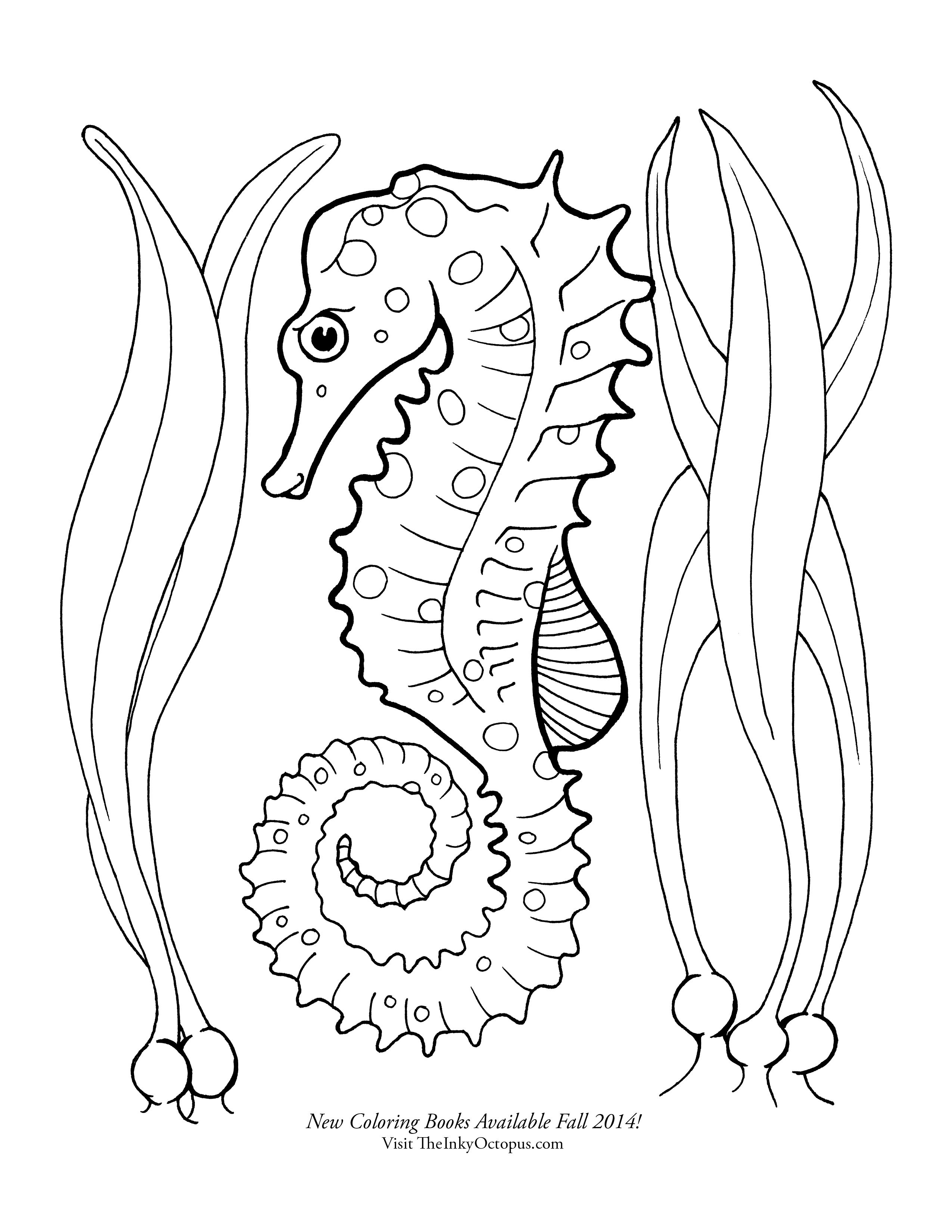 sea horse coloring pages 20 free printable seahorse coloring pages horse sea pages coloring