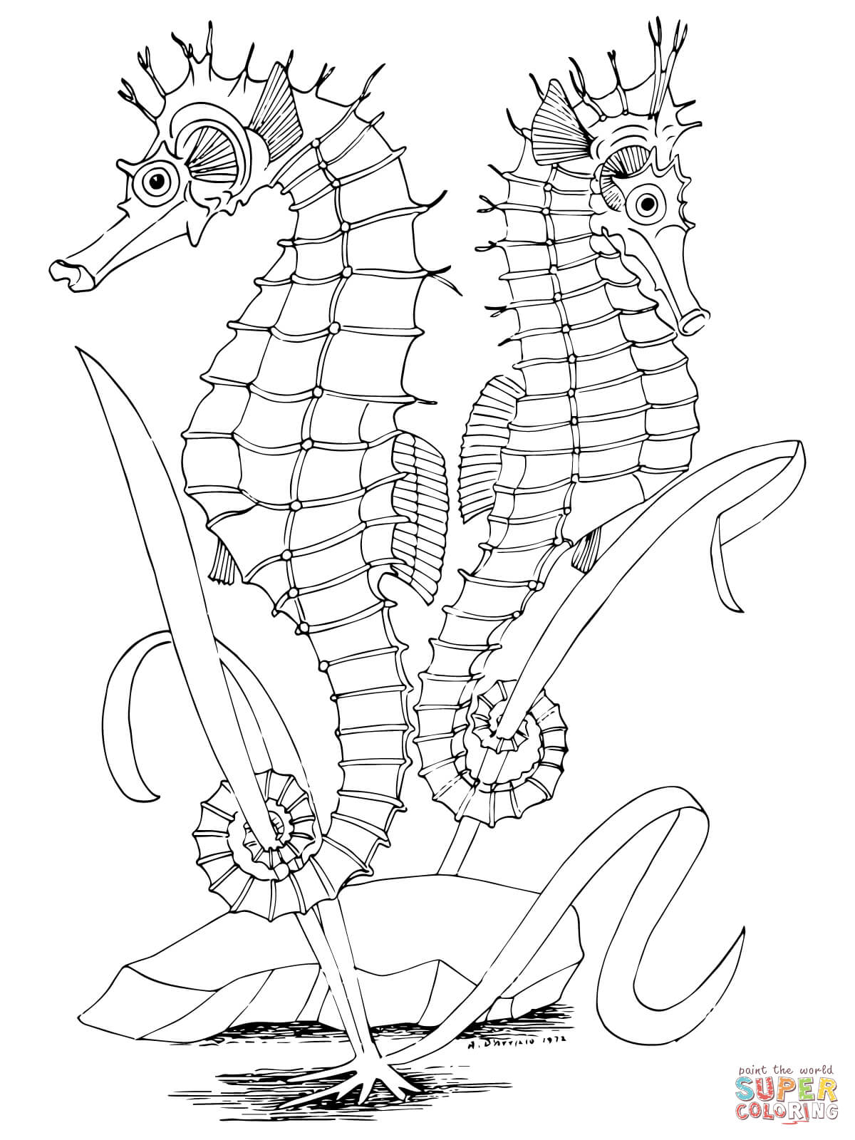 sea horse coloring pages cute baby seahorse coloring page pages coloring sea horse