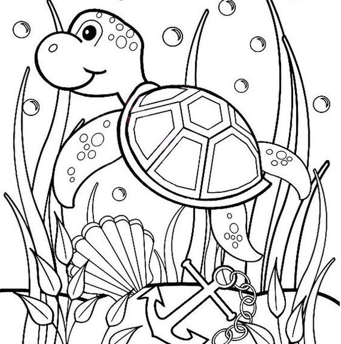 sea turtle coloring pages printable detailed turtle coloring pages at getcoloringscom free sea coloring printable turtle pages