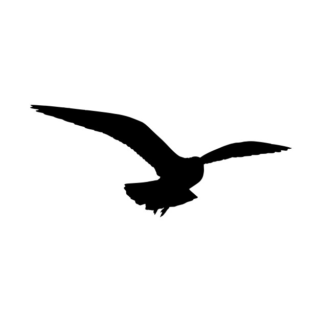 seagull silhouette 25 best seagull tattoo images on pinterest seagull seagull silhouette