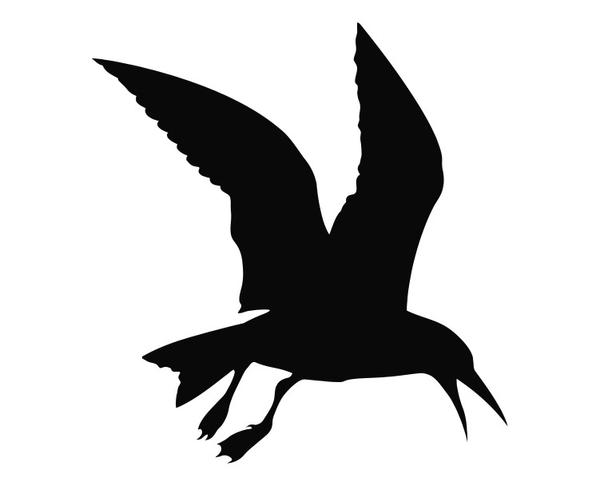 seagull silhouette royalty free silhouette of a free wildlife clip art seagull silhouette