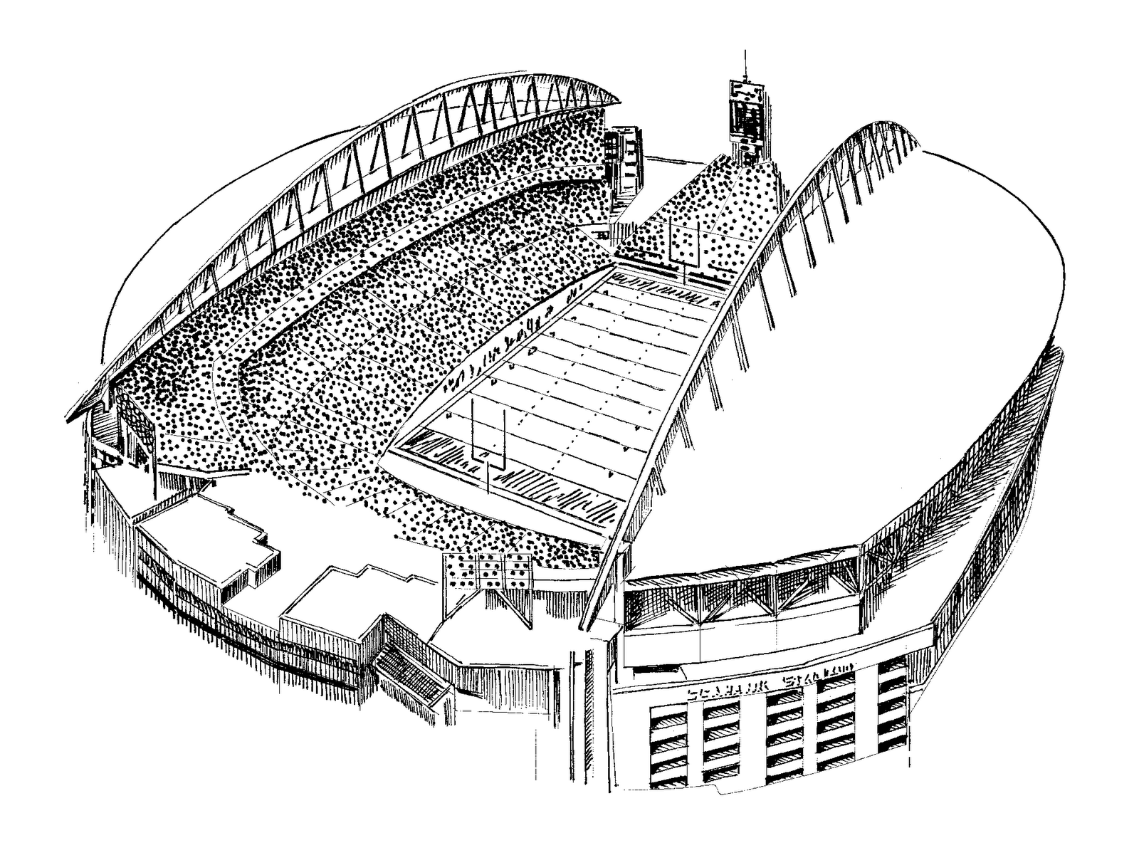 seahawks coloring pages seattle seahawks coloring pages at getcoloringscom free pages coloring seahawks