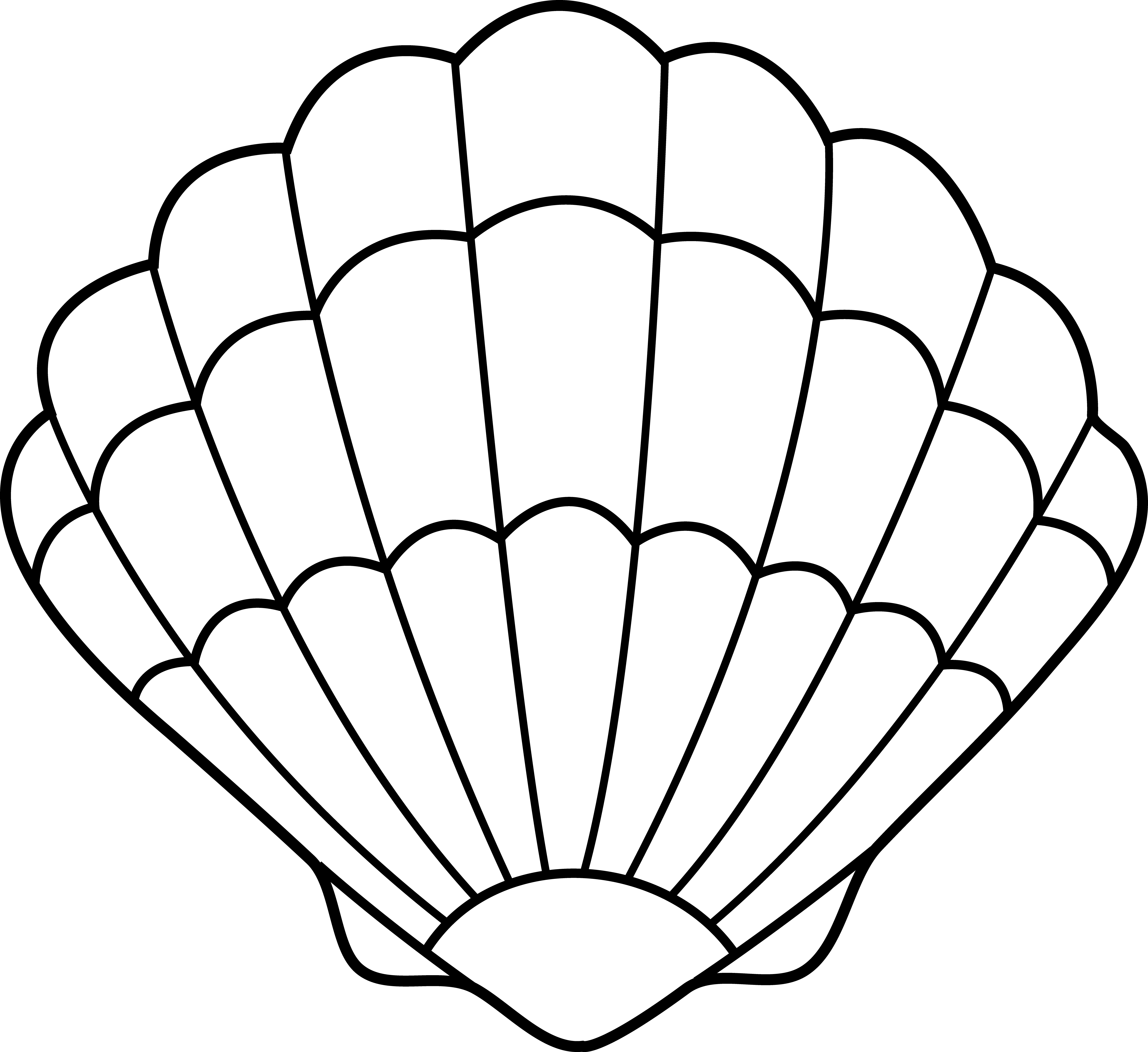 seashell coloring page coloring pages of seashells coloring home page seashell coloring