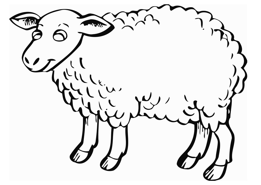 sheep coloring pages sheep coloring pages sheep pages coloring