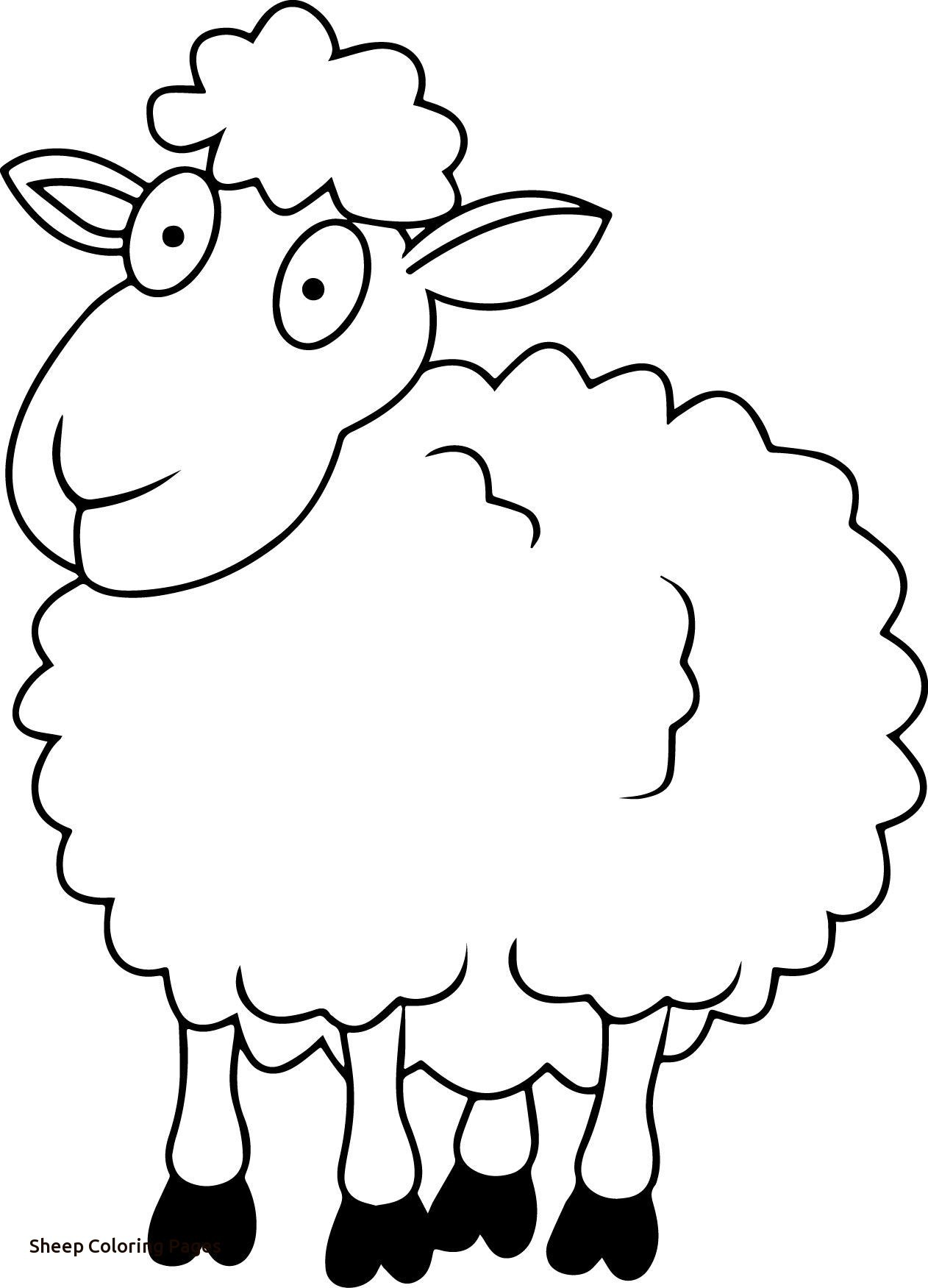 sheep colouring in sheep outline coloring page coloring home sheep colouring in