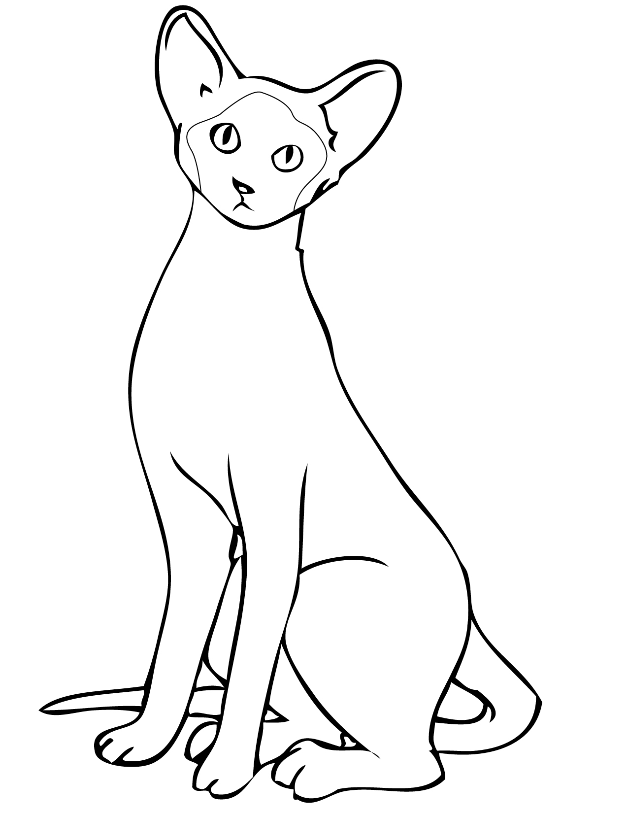 siamese cat coloring pages siamese cat animals adult coloring pages pages siamese coloring cat