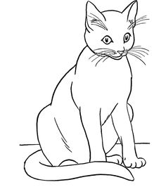 siamese coloring pages siamese cat line drawing at getdrawings free download coloring siamese pages