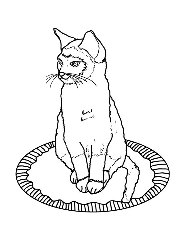 siamese coloring pages sitting siamese cat coloring page supercoloringcom siamese pages coloring