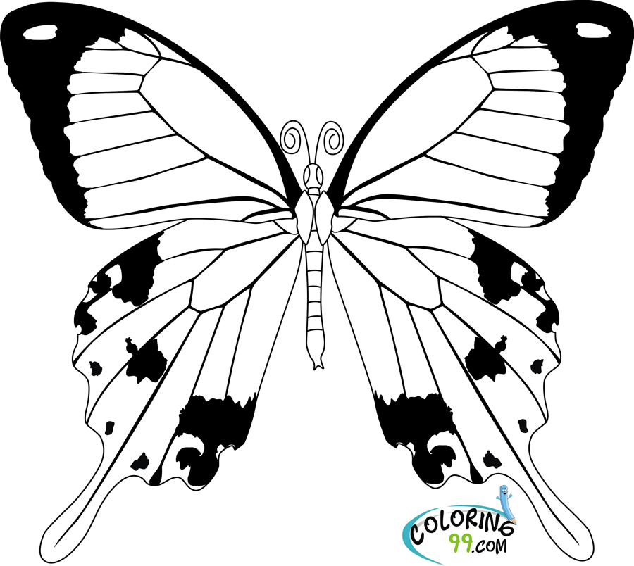 simple easy butterfly coloring pages brilliant image of monarch butterfly coloring page coloring simple pages butterfly easy