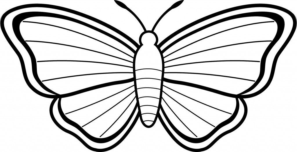 simple easy butterfly coloring pages butterfly coloring pages team colors butterfly pages coloring simple easy