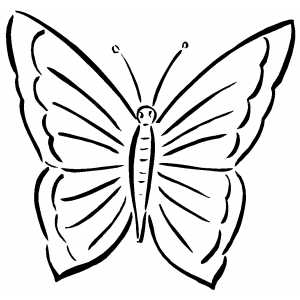 simple easy butterfly coloring pages coloring pages butterfly color pages for kids coloring easy pages butterfly simple