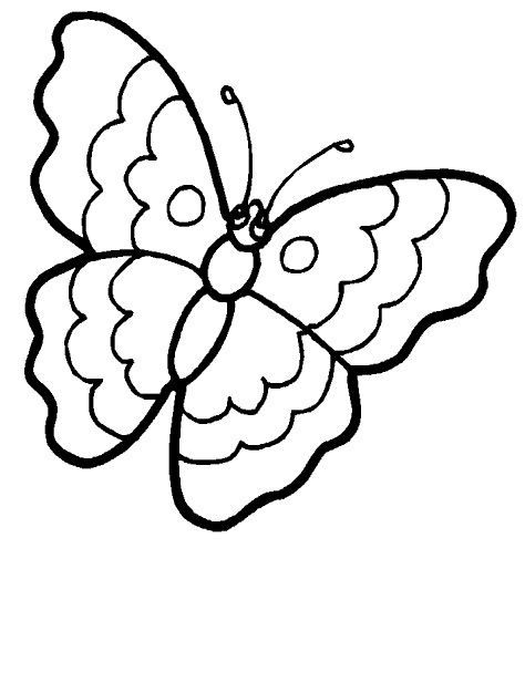simple easy butterfly coloring pages free printable butterfly coloring pages for kids simple butterfly pages easy coloring