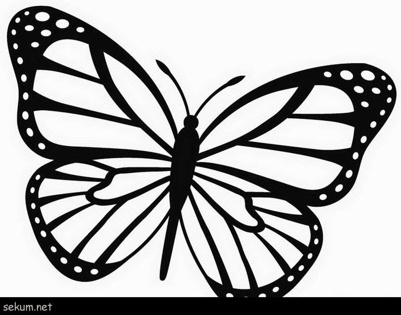 simple easy butterfly coloring pages simple butterfly coloring page coloring home pages simple easy coloring butterfly