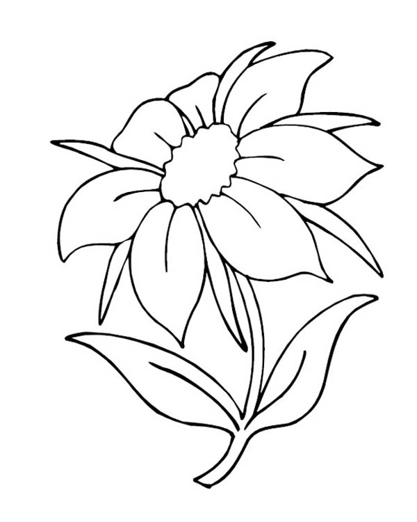 simple nature coloring pages free adult coloring pages sunset k5 worksheets in 2019 nature simple pages coloring