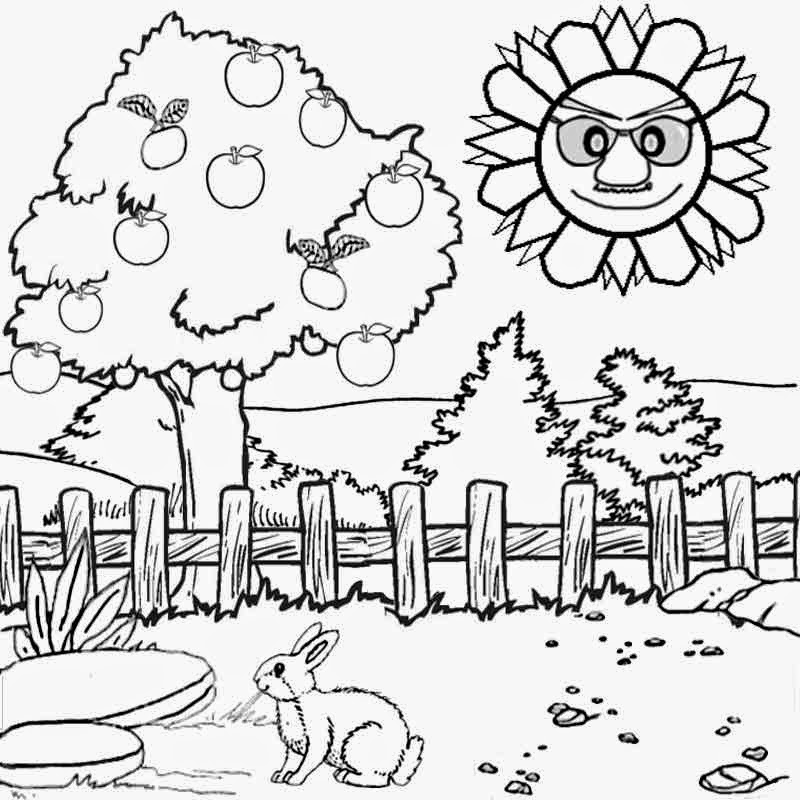simple nature coloring pages nature scene simple nature coloring pages