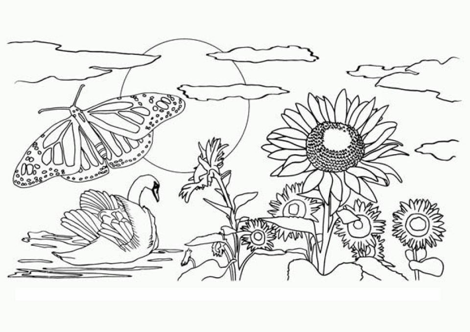 simple nature coloring pages printable nature coloring pages for kids coloring nature simple pages
