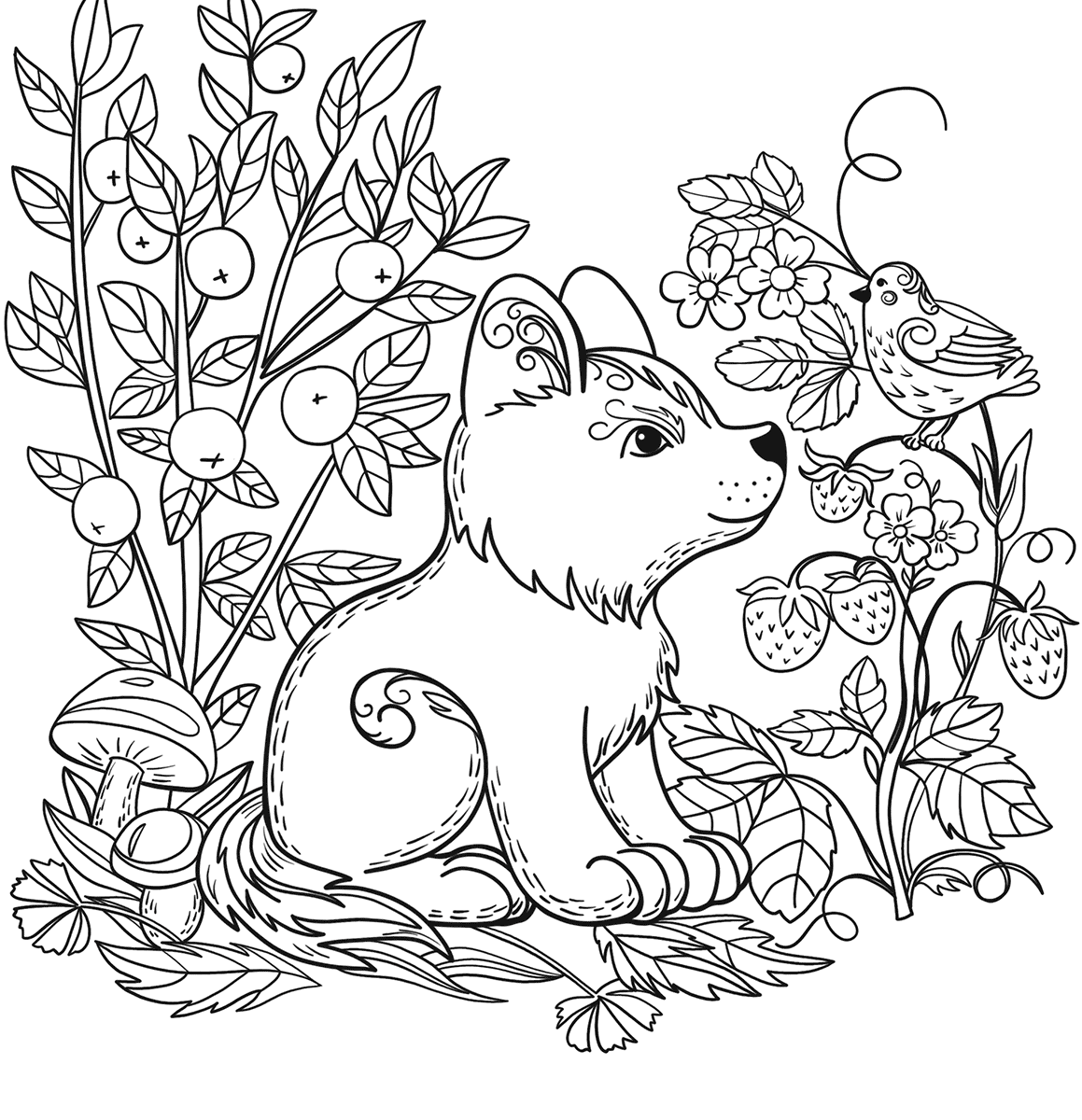 simple nature coloring pages printable nature coloring pages for kids cool2bkids simple pages nature coloring
