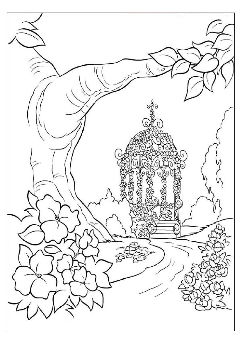 simple nature coloring pages realistic nature pages coloring pages nature simple pages coloring