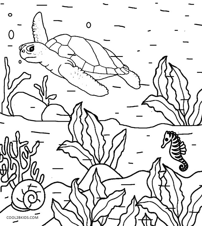 simple nature coloring pages simple fish coloring pages download and print for free nature pages coloring simple