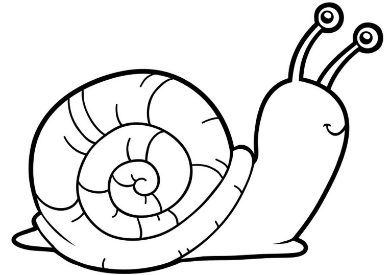 snail coloring page kids wanda luthman39s children39s books snail page coloring